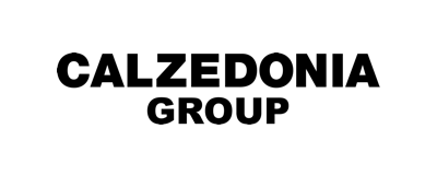 Doing Capgemini logo